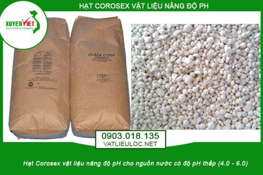 Catalog hạt nâng pH Corosex