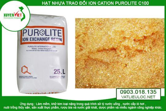 Hạt Nhựa PUROLITE Trao Đổi Cation (Ion) C100 – Môi Trường Xuyên Việt