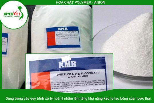Hóa Chất Polymer – Anion Xử Lý Nước – Công Ty Môi Trường Xuyên Việt