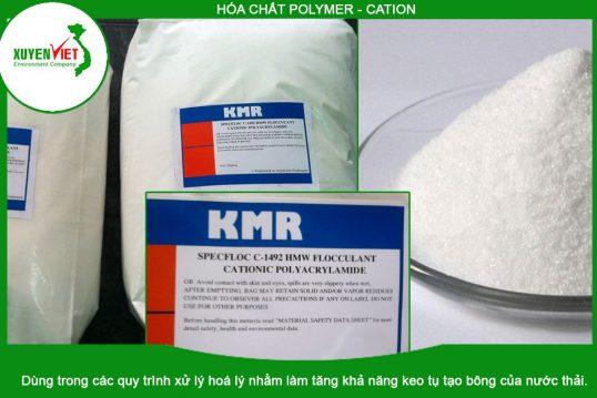Hóa chất Polymer Cation